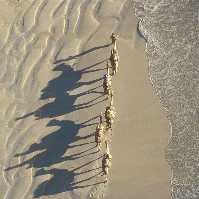 Voyage en Australie - Chameaux broome vacances