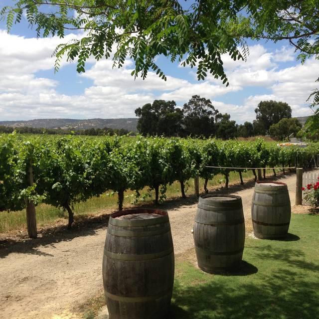 Voyage en Australie - Vignobles