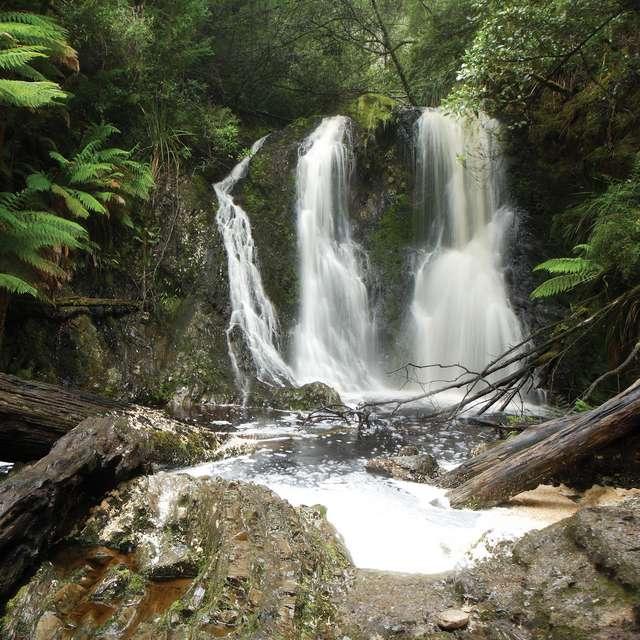 Roadtrip Tasmanie -