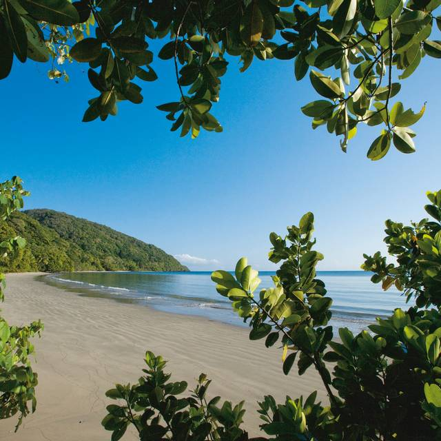 Voyage en Australie - Cap Tribulation