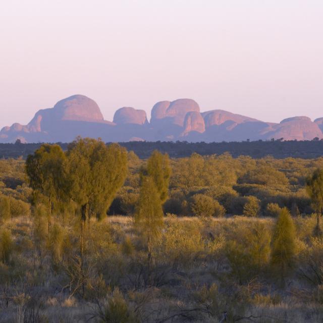 Voyage en Australie - Monts Olga