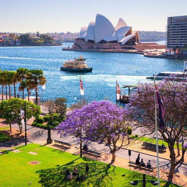 La Route du Pacifique - Australie - Opera de Sydney