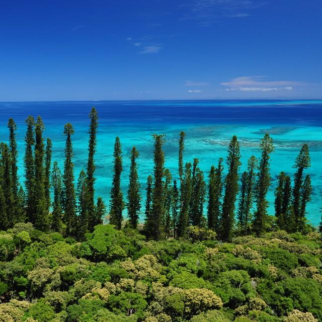 La Route du Pacifique - île des pins nouvelle Calédonie - Ile des Pins