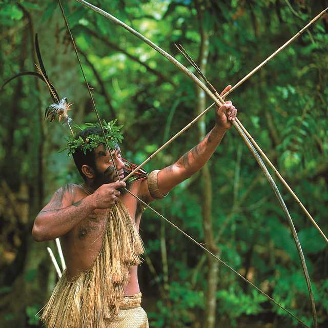 Forêt tropicale - Voyage au Vanuatu
