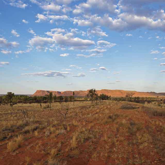 Voyage de noces Australie - Kings Canyon