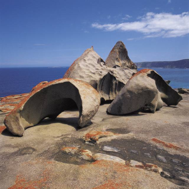 circuit nature et œnologie en Australie - Kangaroo Island
