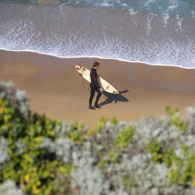 circuit jeunes en Australie - Surfeur sur la Great Ocean Road