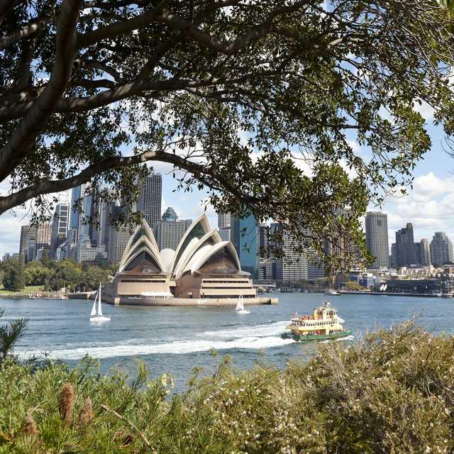 Voyage en Australie - Opéra de Sydney