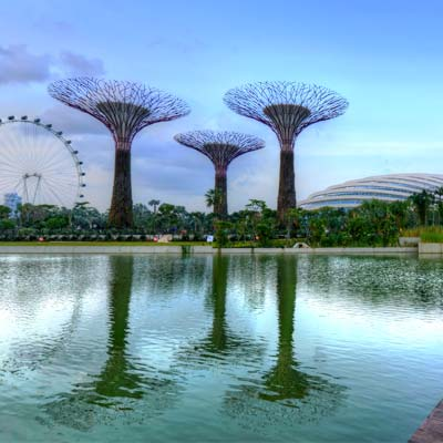 Gardens by the bay Escale à Singapore