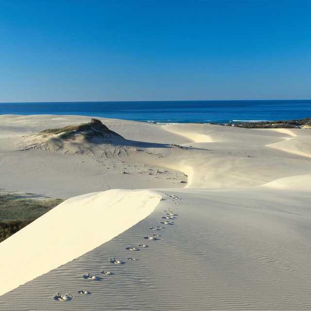 Séjour Australie Queensland - Fraser Island