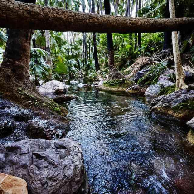 Voyage guidé en Australie - Zebedee Springs, El Questro Wilderness Park
