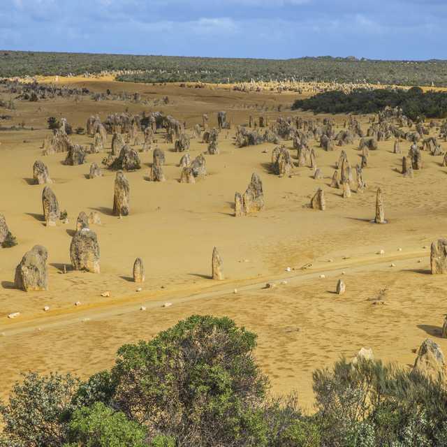 Voyage guidé en Australie - Désert des Pinnacles, Nambung National Park