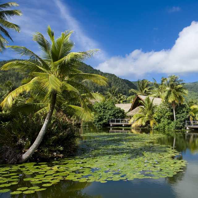 Voyage en Polynésie Francaise - Huahine