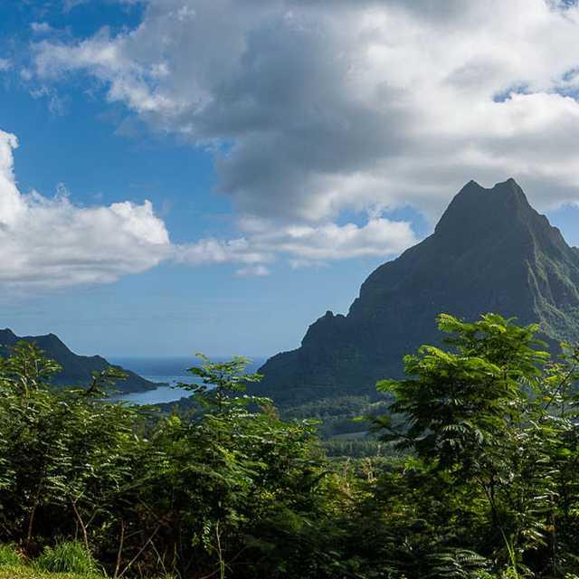 Voyage en Polynésie Francaise - Moorea