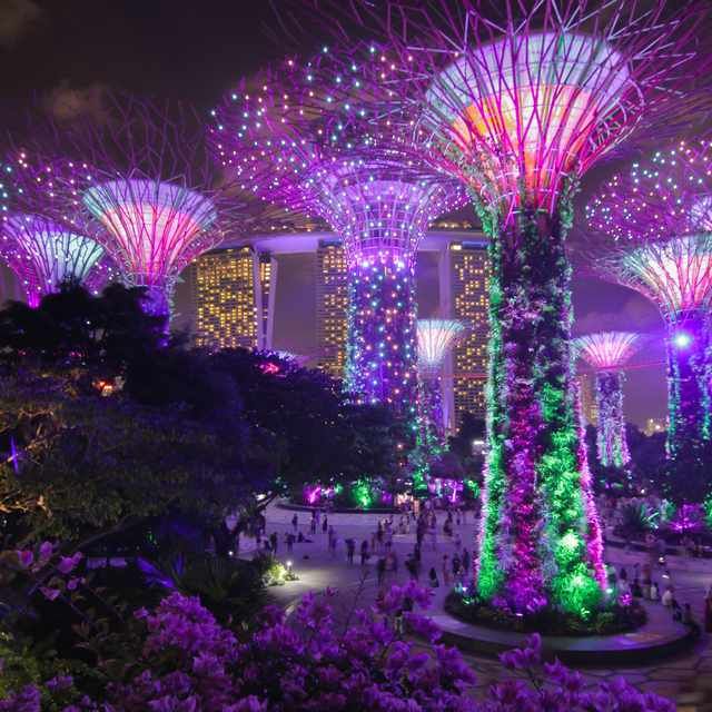 Voyage multi destinations - Singapour, Gardens by the Bay